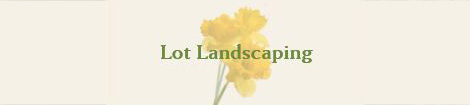 lot-landscaping