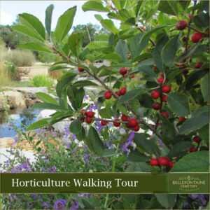Horticulture-Walking-Tour